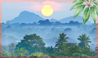 Sri-lanka-itinerary_thumb