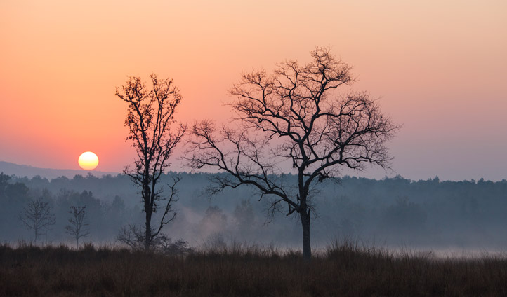 Watch the sunset over Kanha National Park