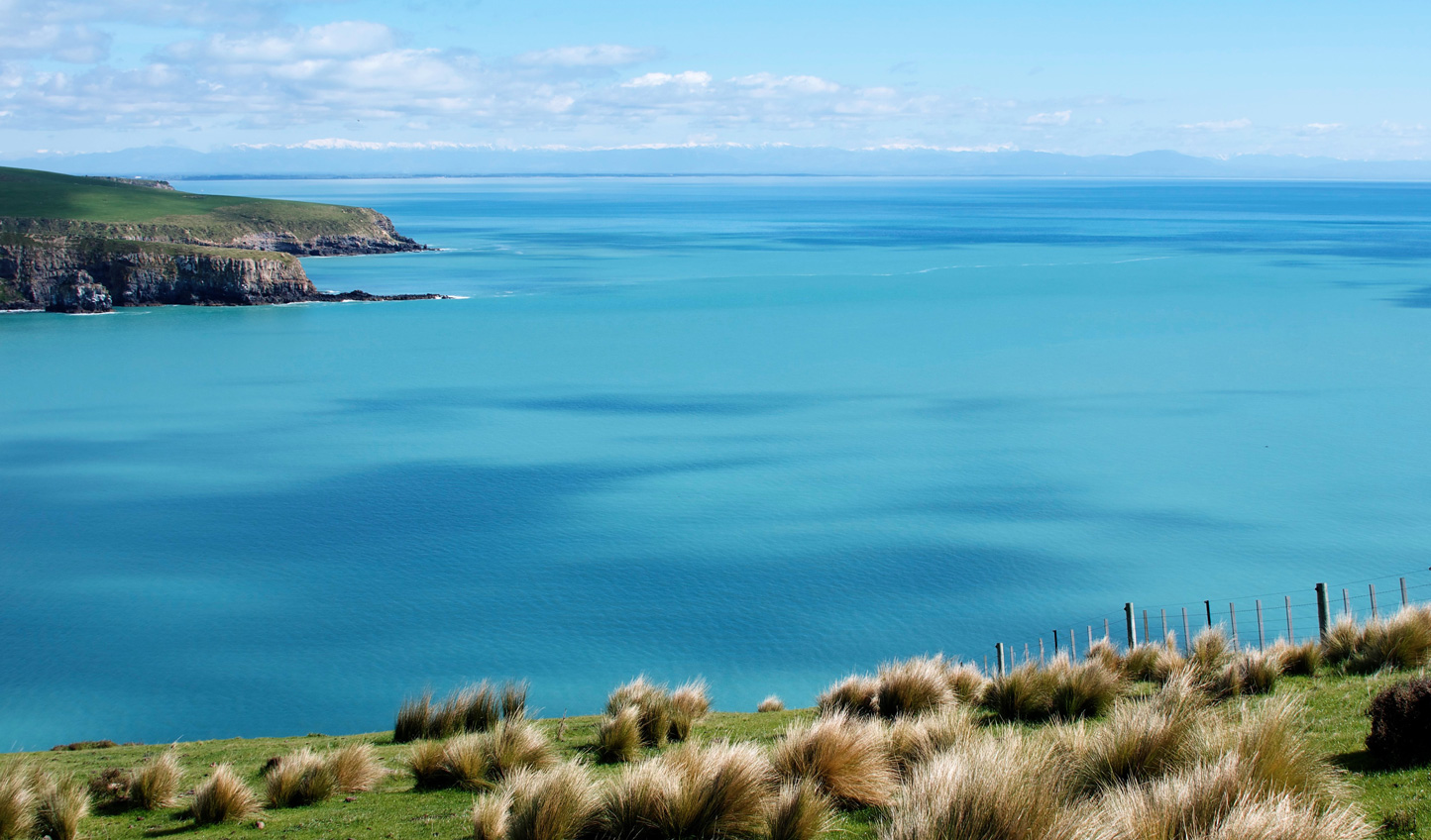 Explore the pristine beauty of Banks Peninsula