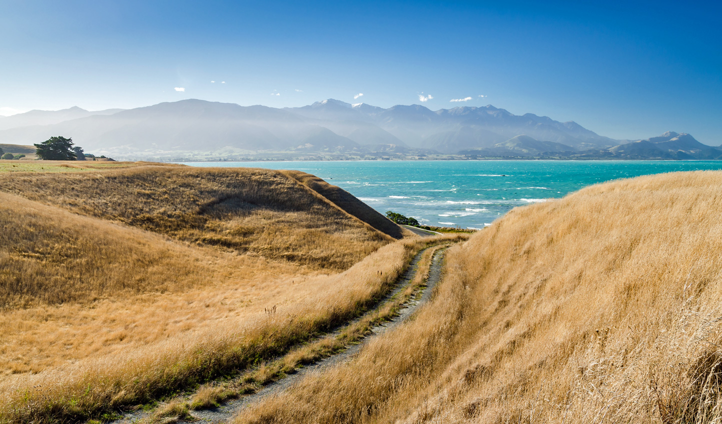 Head down to the aquamarine waters off Kaikoura