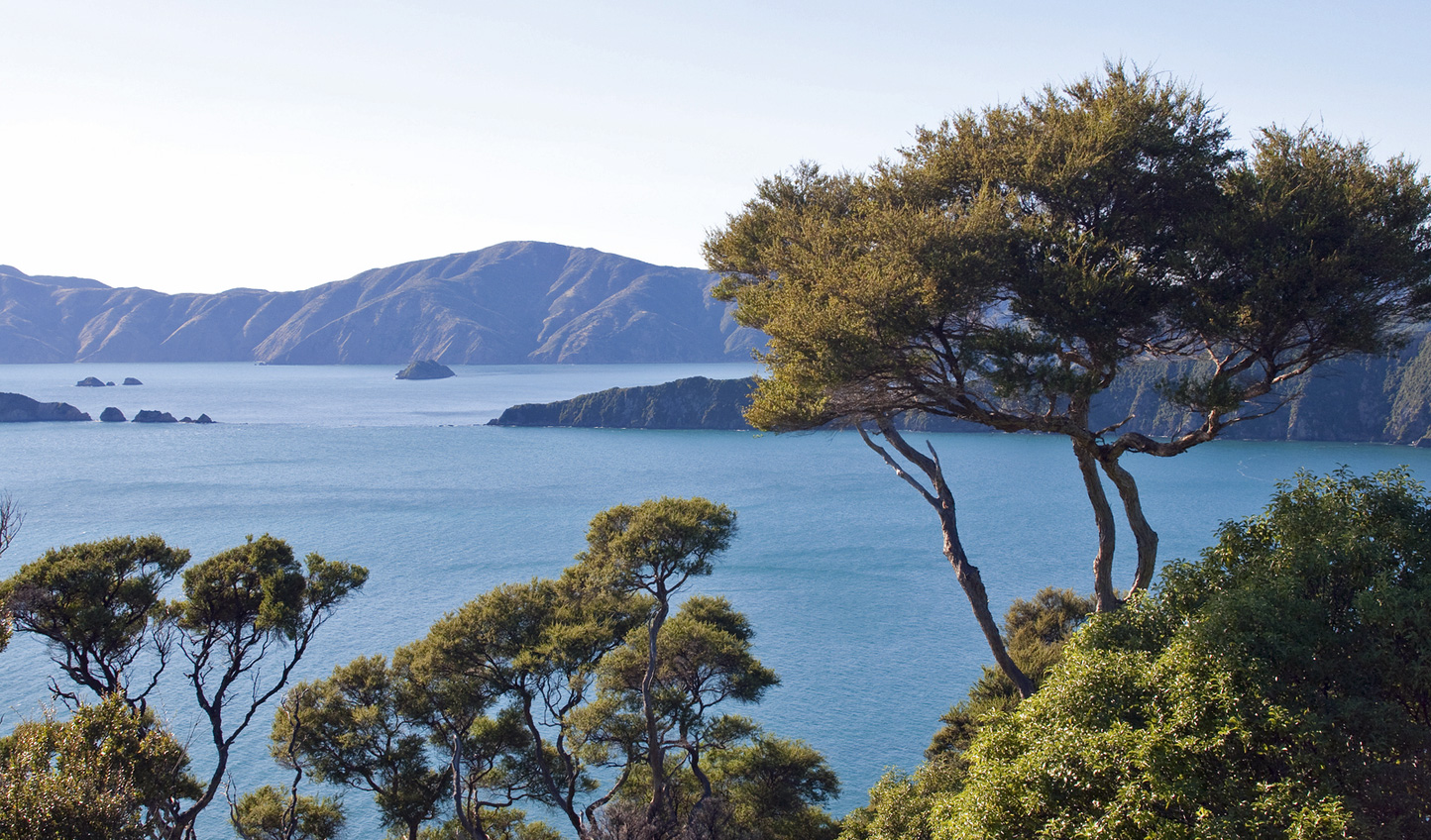 Explore the South Island from top to bottom