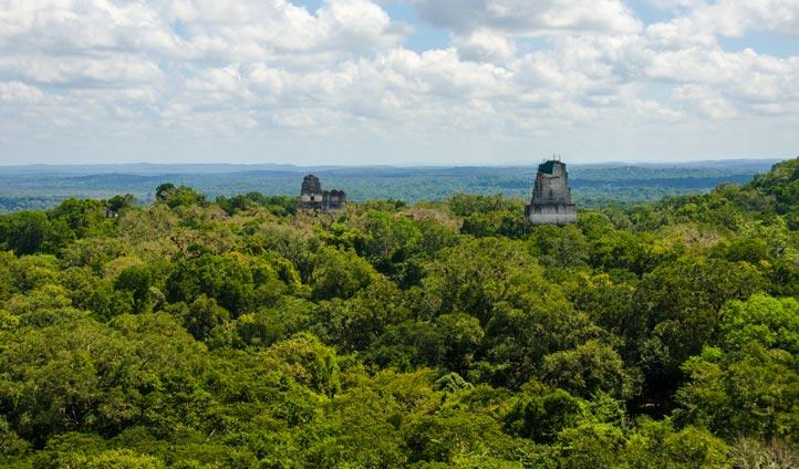 Tikal National Park, Guatemala | Black Tomato