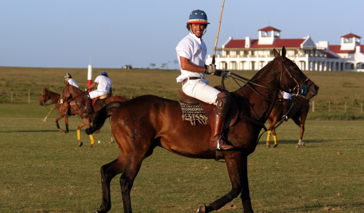 Have a go at polo or simply sit back and watch the experts
