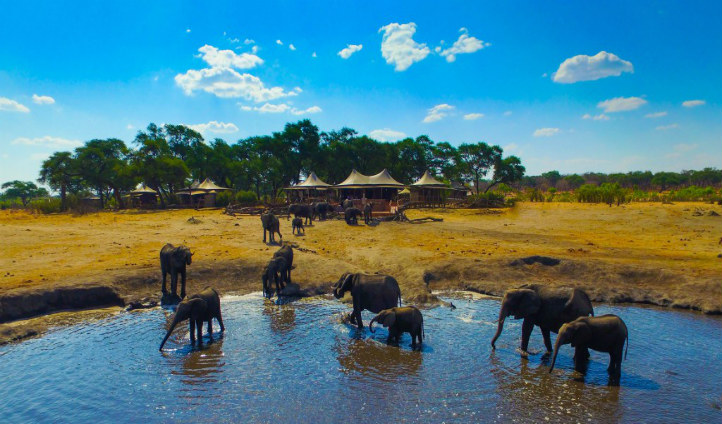Elephants at the watering hole, Somalisa | Black Tomato