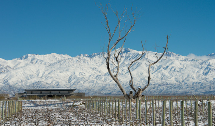 Vines Resort is just as beautiful in winter