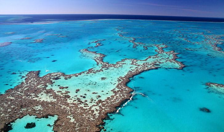Great Barrier Reef, Australia | Black Tomato