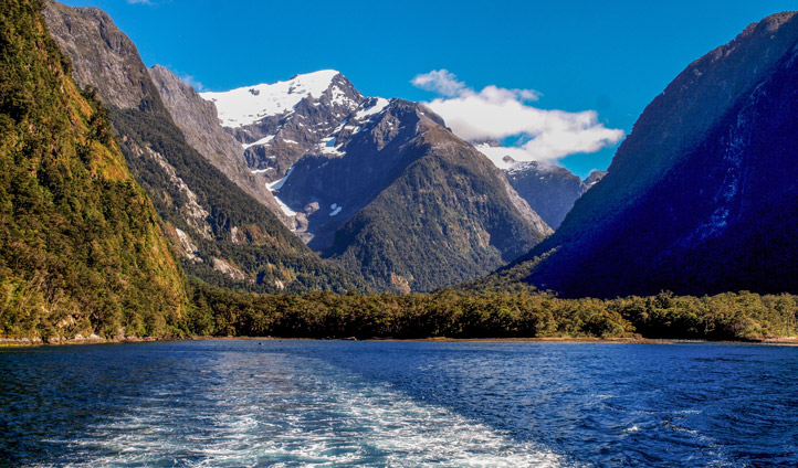 Tour the alpine waters of Milford Sound