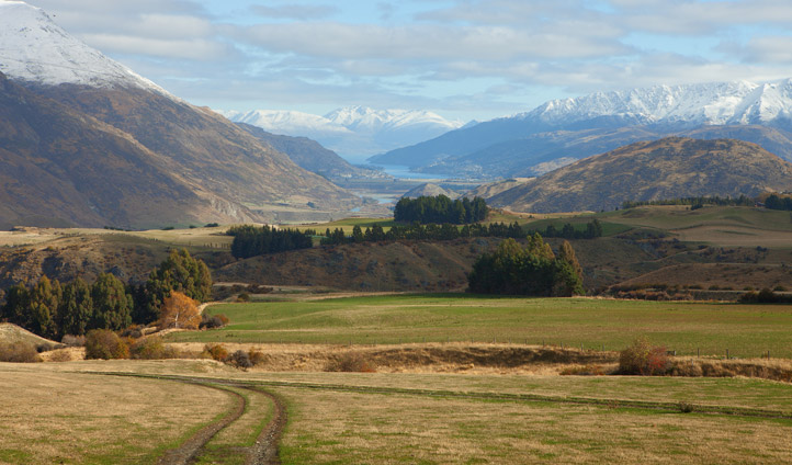 New Zealand's earlthy landscapes stretch for miles