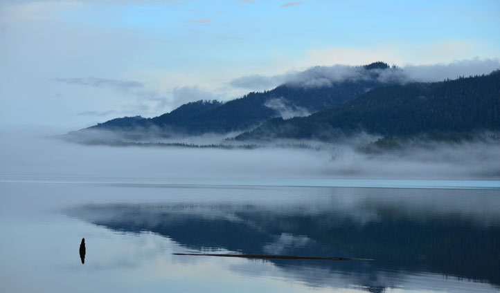 Lake Quinault, Washington State