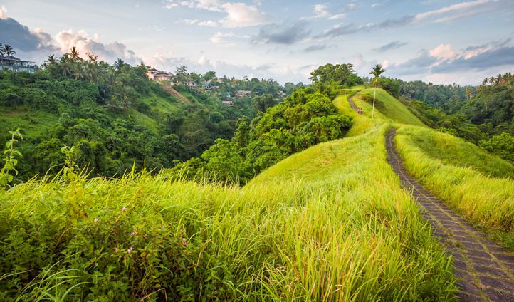 Walk through beautiful scenery