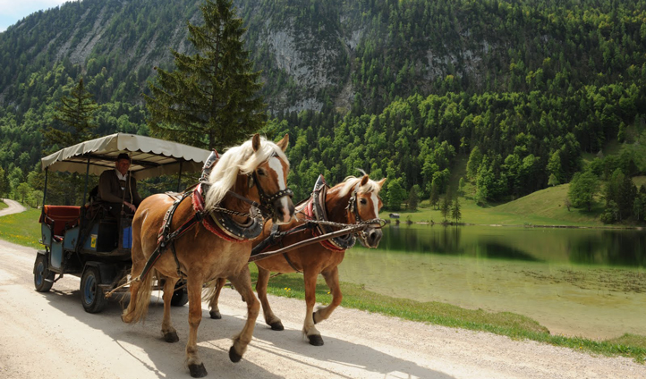 Ride in style in Bavaria