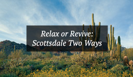 Scottsdale Relax or Revive