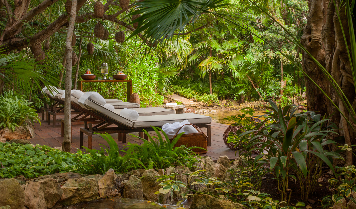 Relax in the peace of the cenote