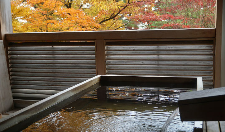 Relax in your private hot spring bath overlooking the gardens