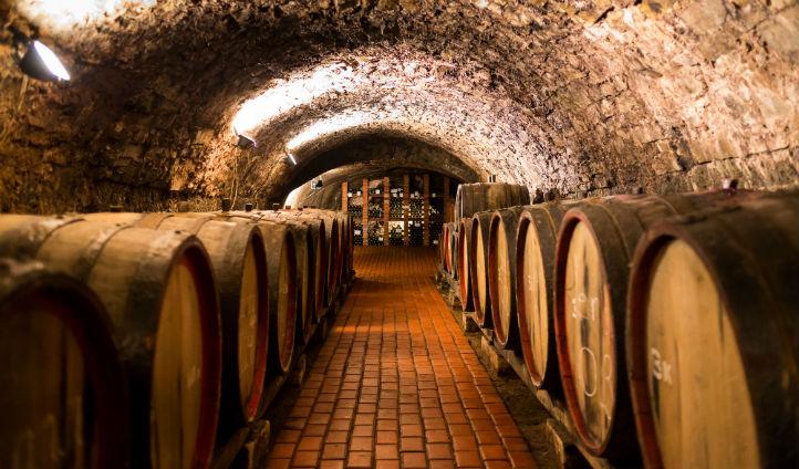 Discover wine cellars in Porto