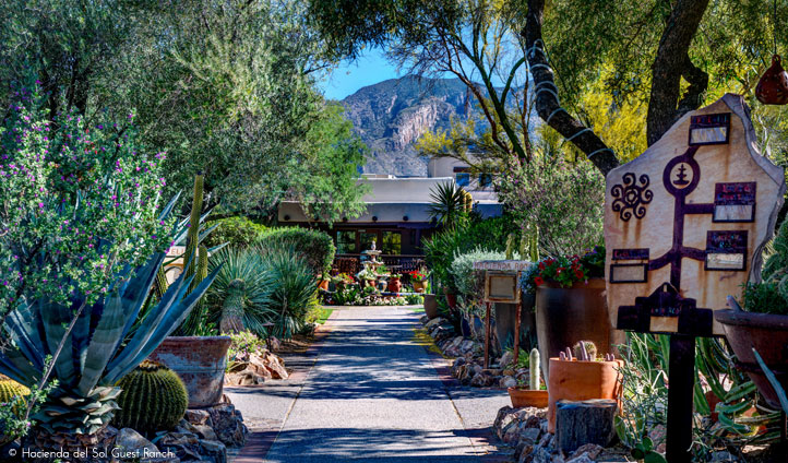 Lush desert beauty at Hacienda del Sol