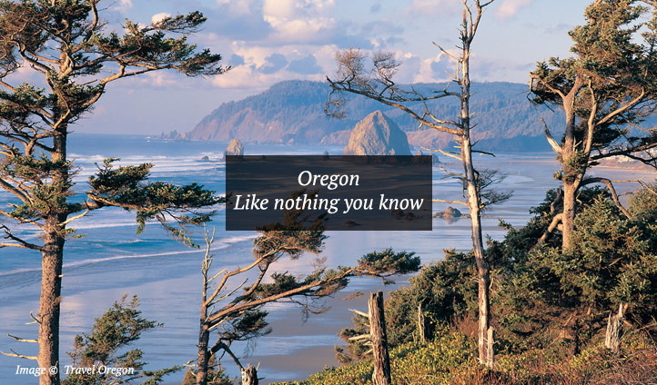 The dramatic coastline along the state of Oregon, USA