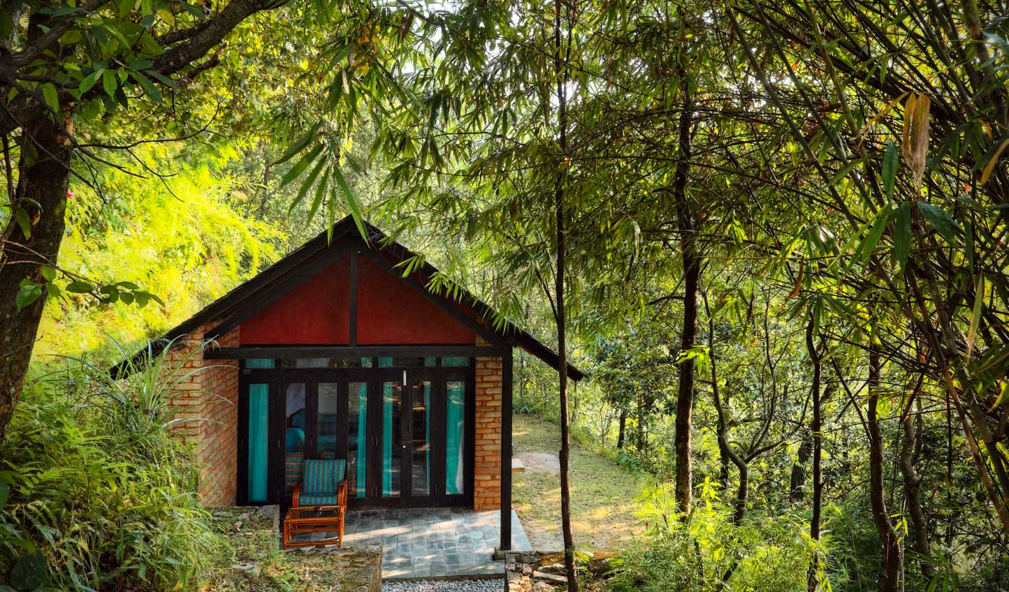 Hideaway in the forest at Tiger Mountain Lodge