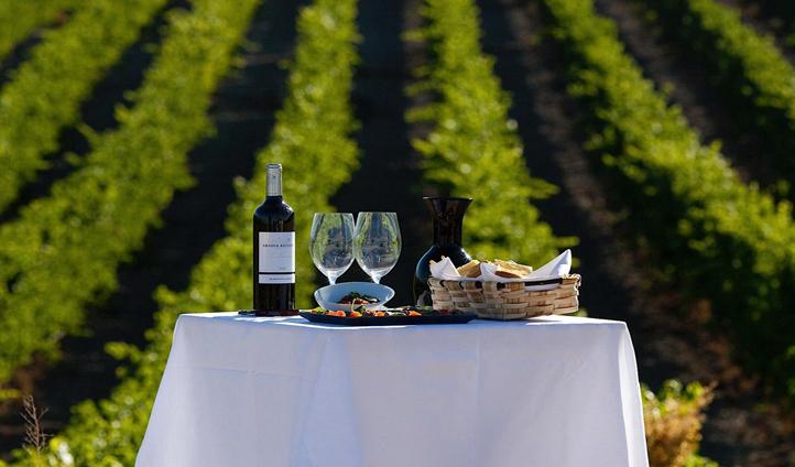 Take an expert tour around the Abadia Retuerta winery