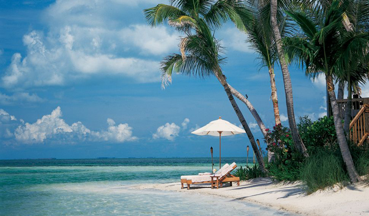 Gaze at turquoise waters at Little Palm Island