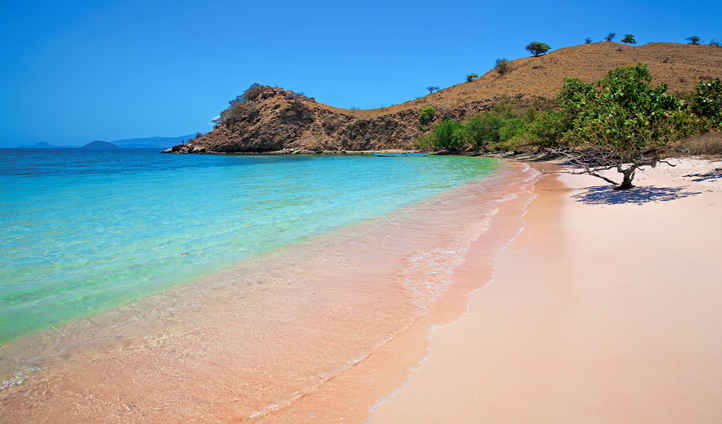 The mesmerising Pink Beach