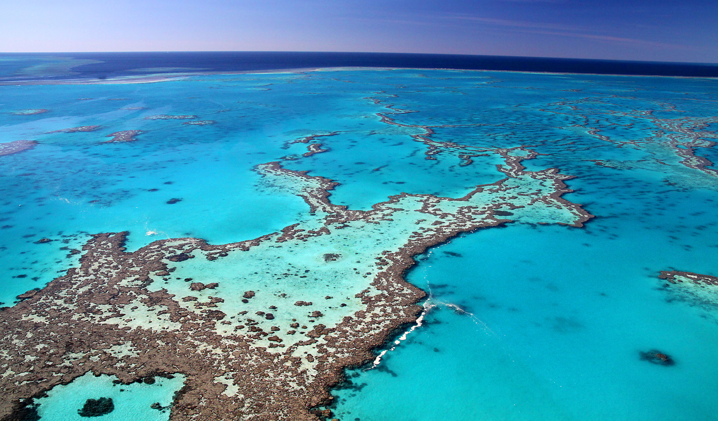 Discover the marine paradise of the Great Barrier Reef