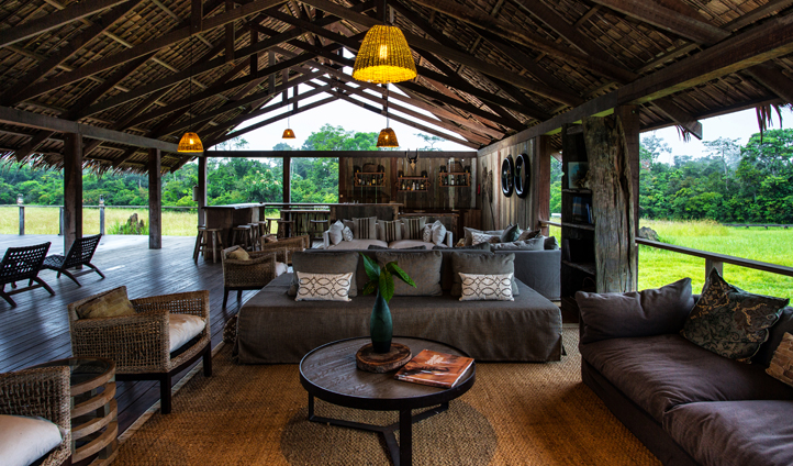 Jungle living at Mboko