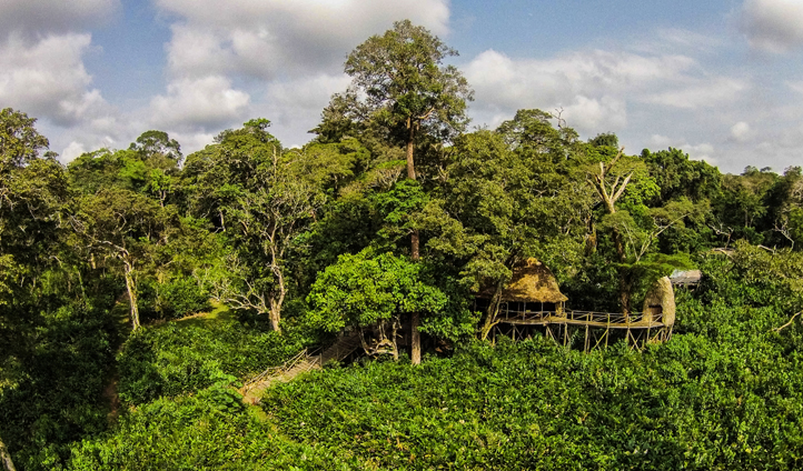 Set in the heart of the jungle - Ngaga Camp