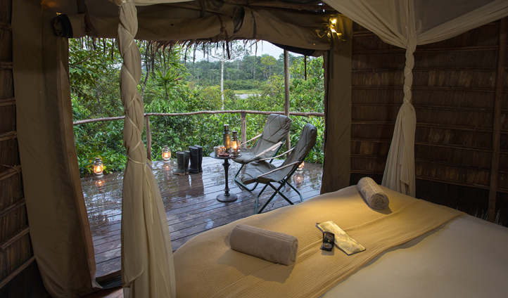Rooms at Lango all feature endless views of the forest