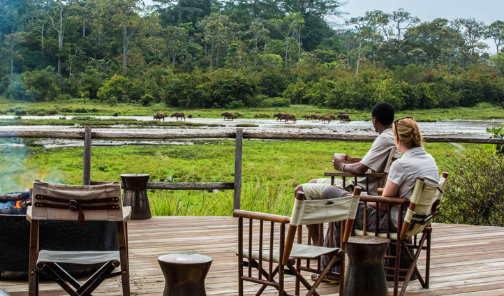 Watch the wildlife from the comfort of the Lango deck