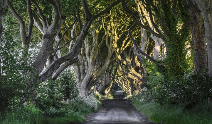 The spooky Kings Road