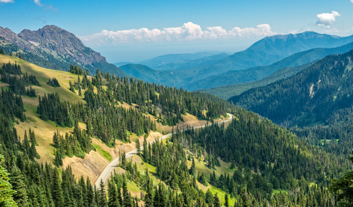 Explore Olympic National Park