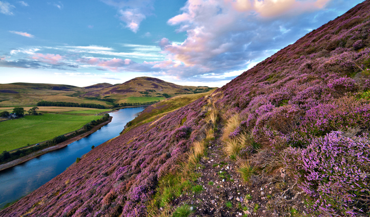Discover the rolling hills of Scotland