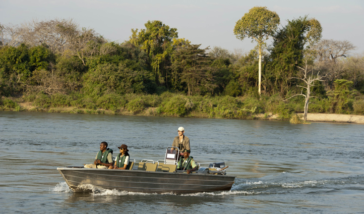 Catch sight of crocodiles and hippopotamuses on a boating safari