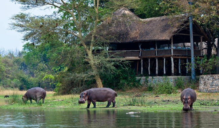 Mvuu Lodge translates as Hippo Lodge and it's easy to see why