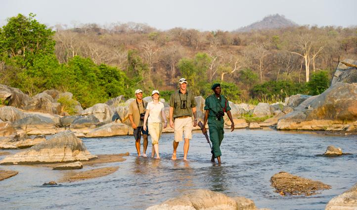 Take a walk on the wild side on a walking safari