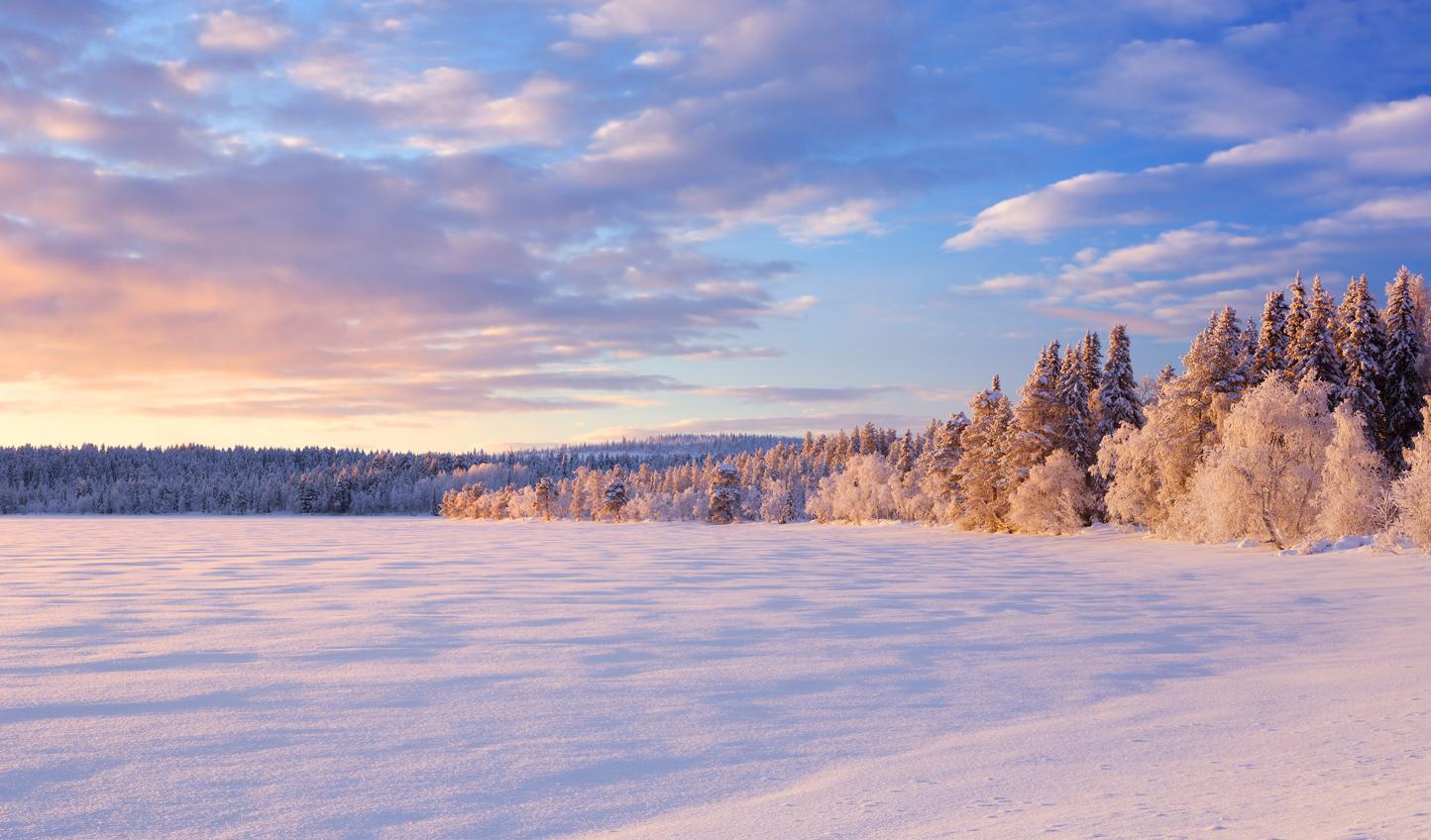 Venture across frozen landscapes