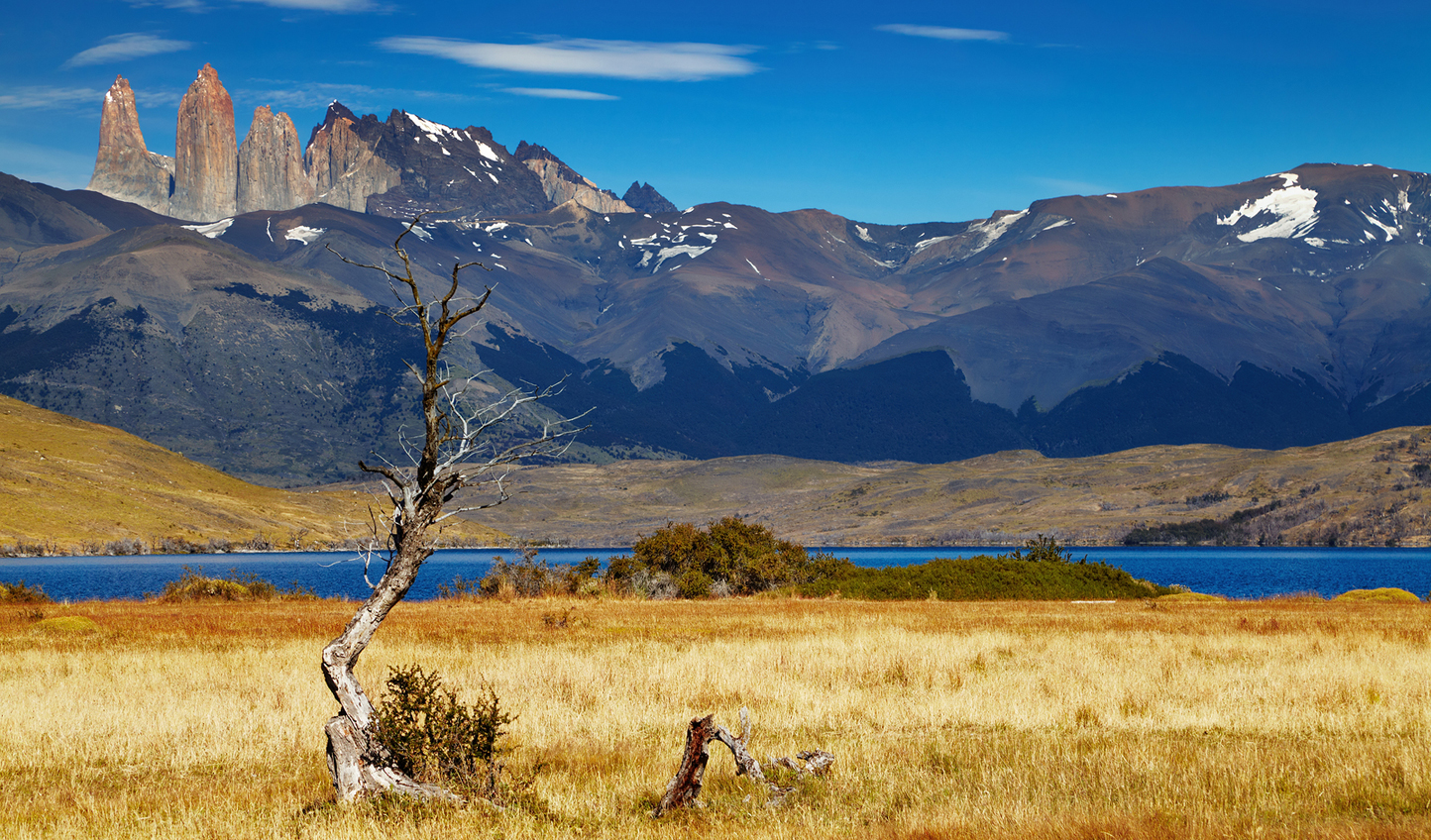 Discover the Torres del Paine National Park