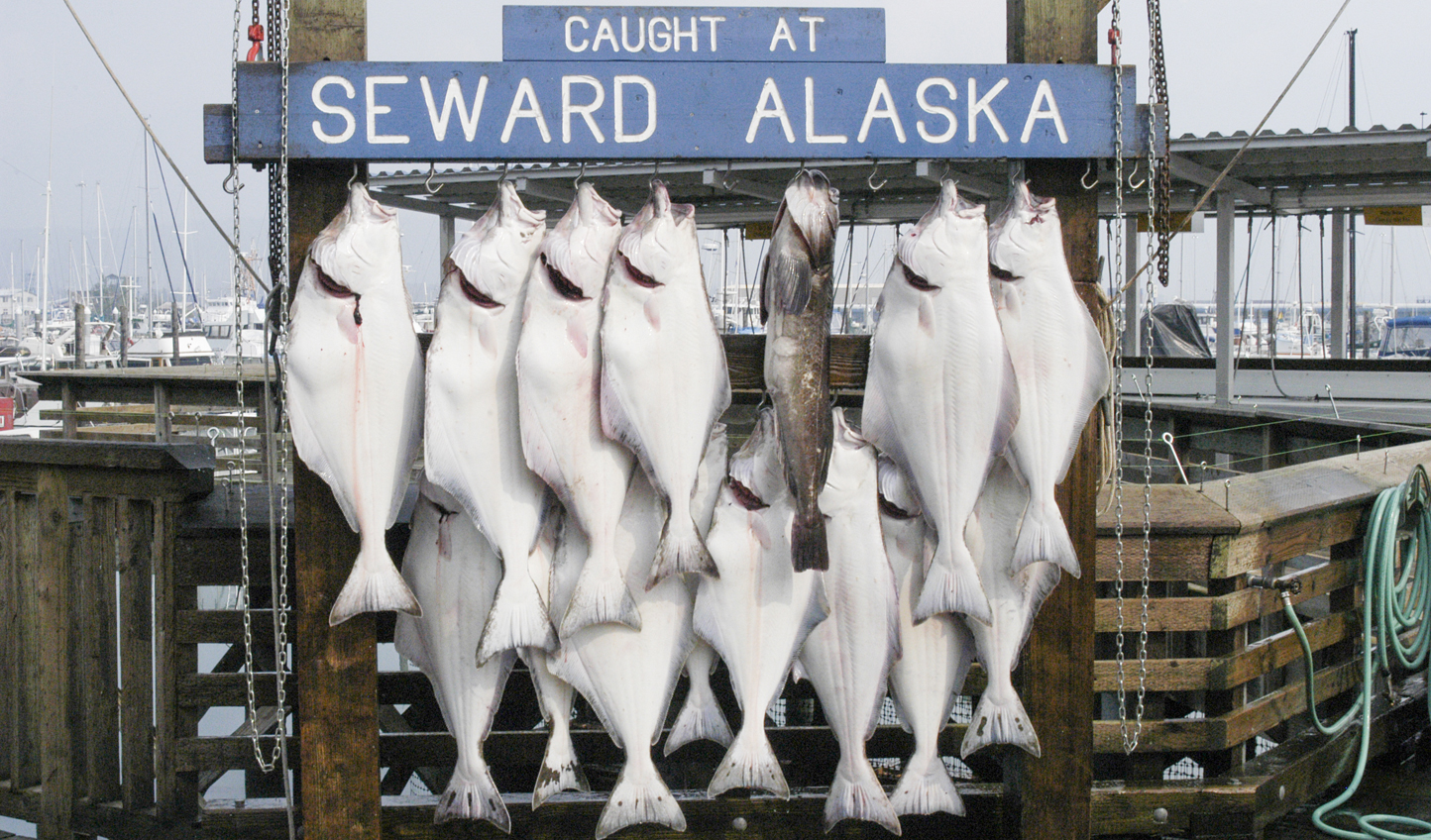 Get to know Seward's rich fishing history
