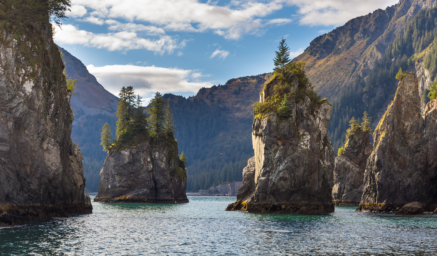 Take in the stunning coastal landscapes of Kenai Fjords National Park
