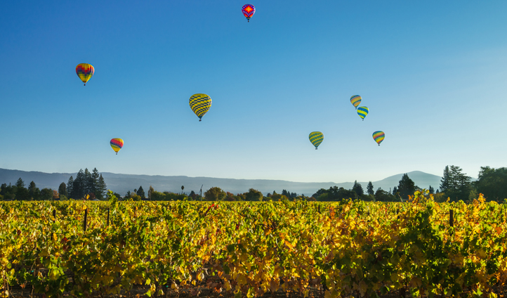 Up, up and away in Napa Valley