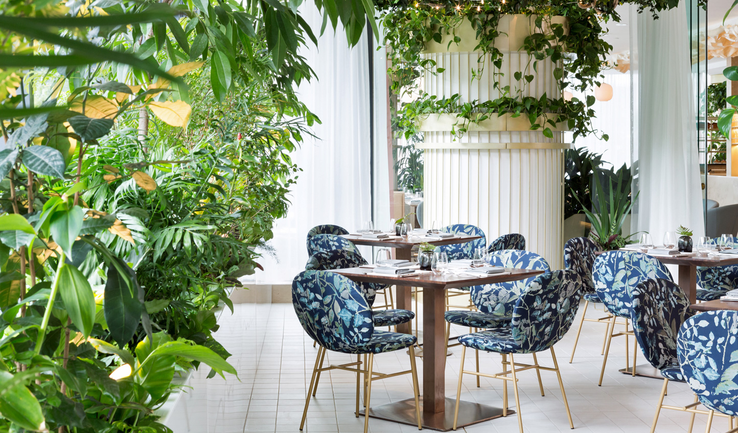 Discover a urban oasis in The Botanist