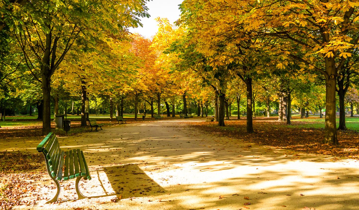 Enjoy a stroll through Tiergarten Park