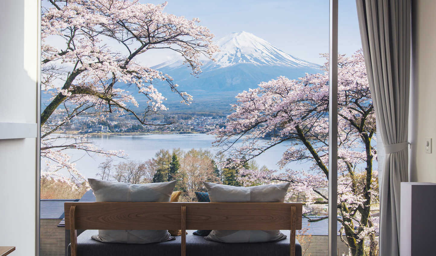 Visit during cherry blossom season for postcard worthy views of Mt. Fuji