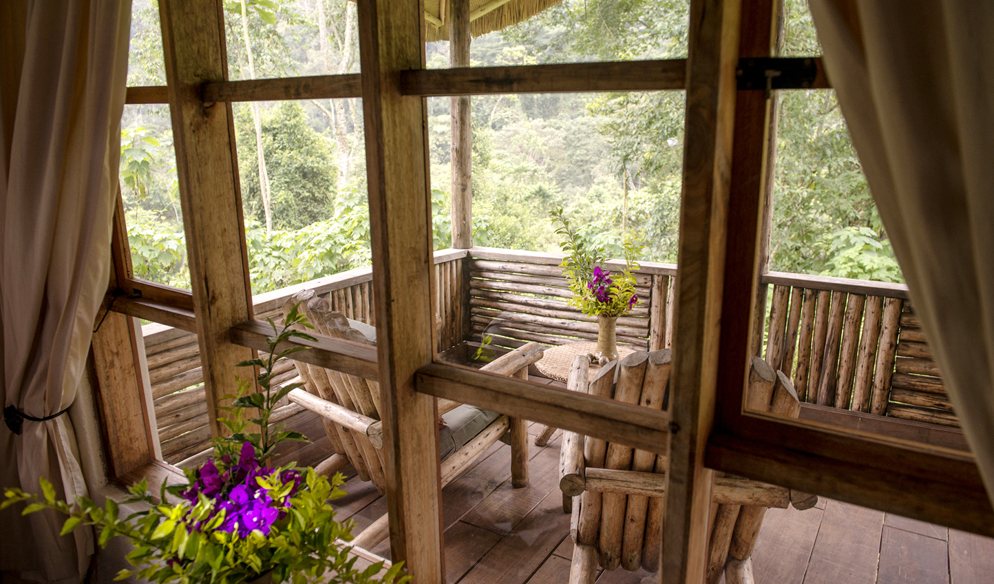 Head out onto your private balcony and watch chimpanzees swing by
