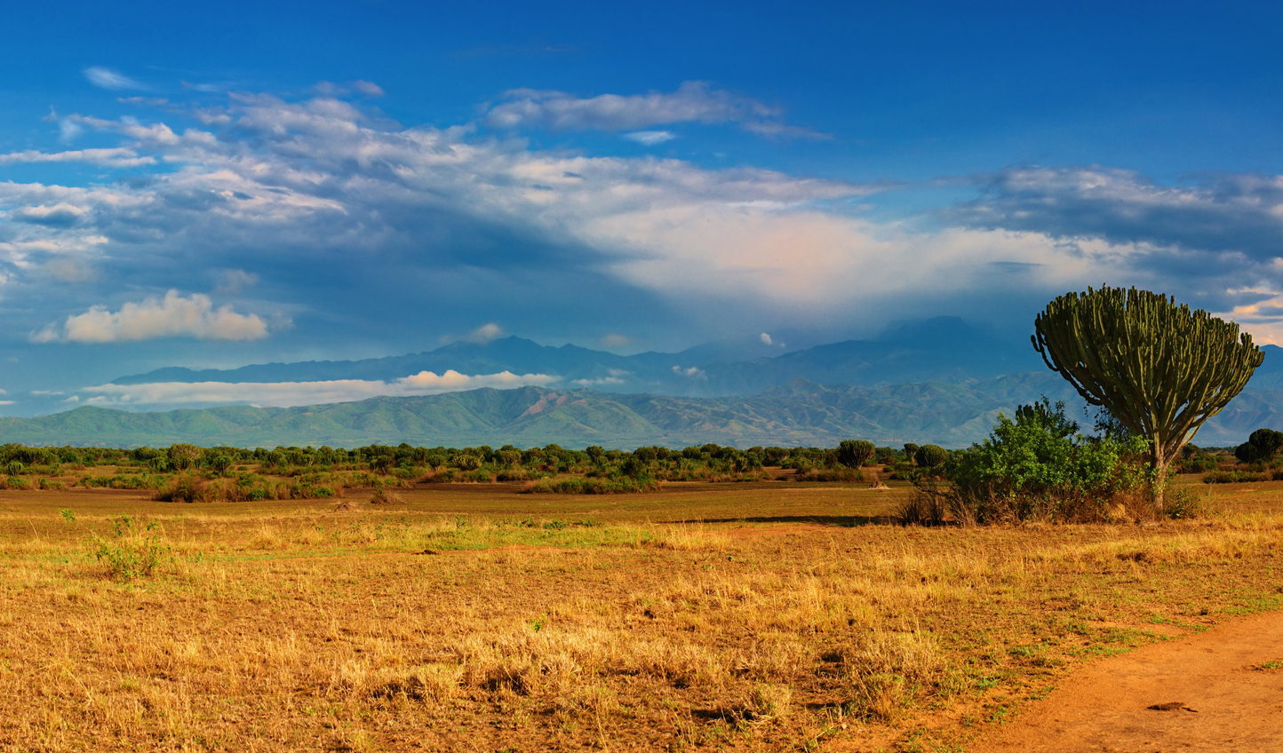 Diverse and untapped: Uganda is Africa's best-kept safari secret