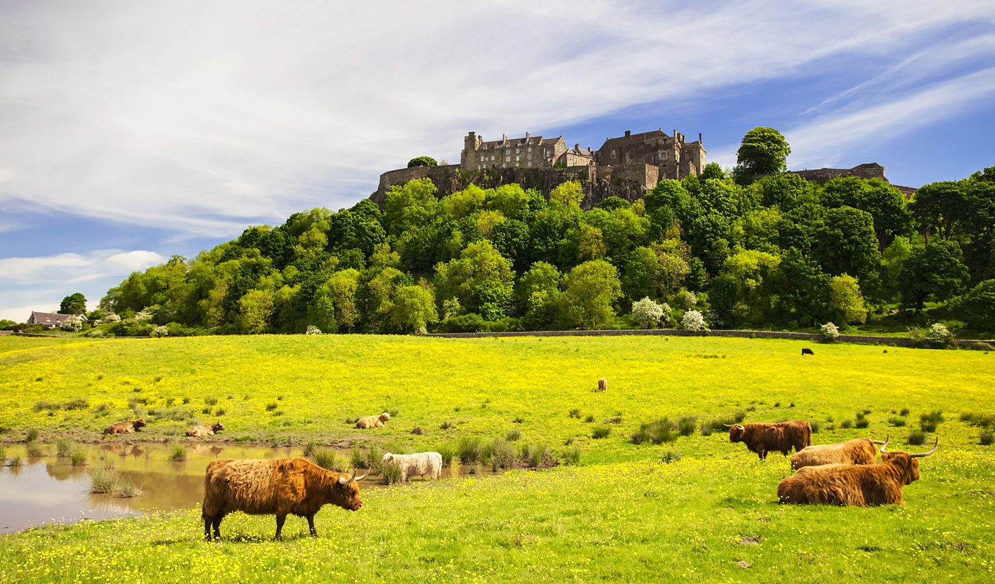 Explore Stirling Castle, standing proud over battlefields and countryside