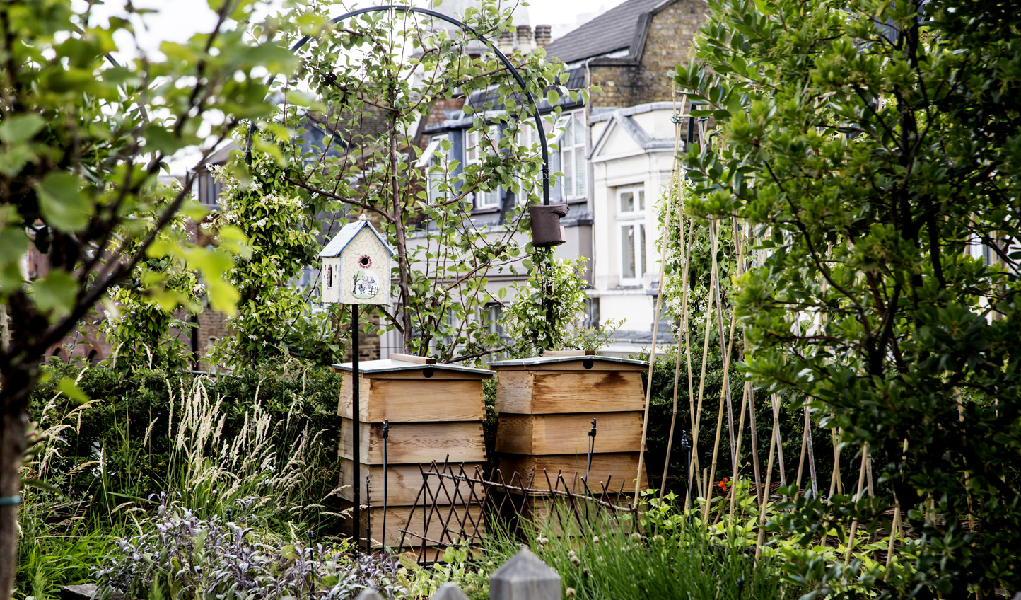 Ham Yard's little urban vegetable garden and bee hives bring some green to the city