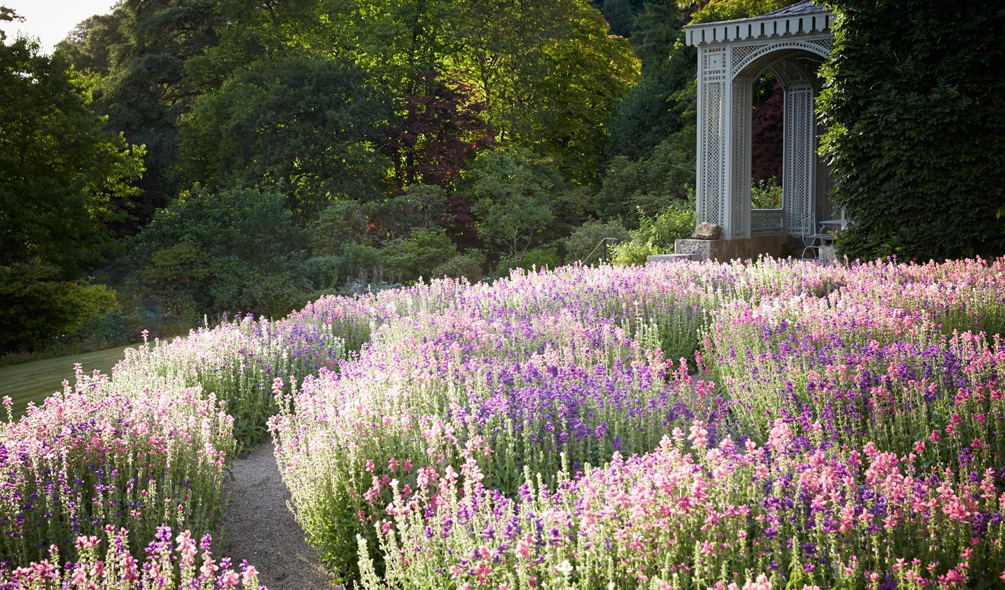 Stroll through gardens blanketed in seasonal blooms