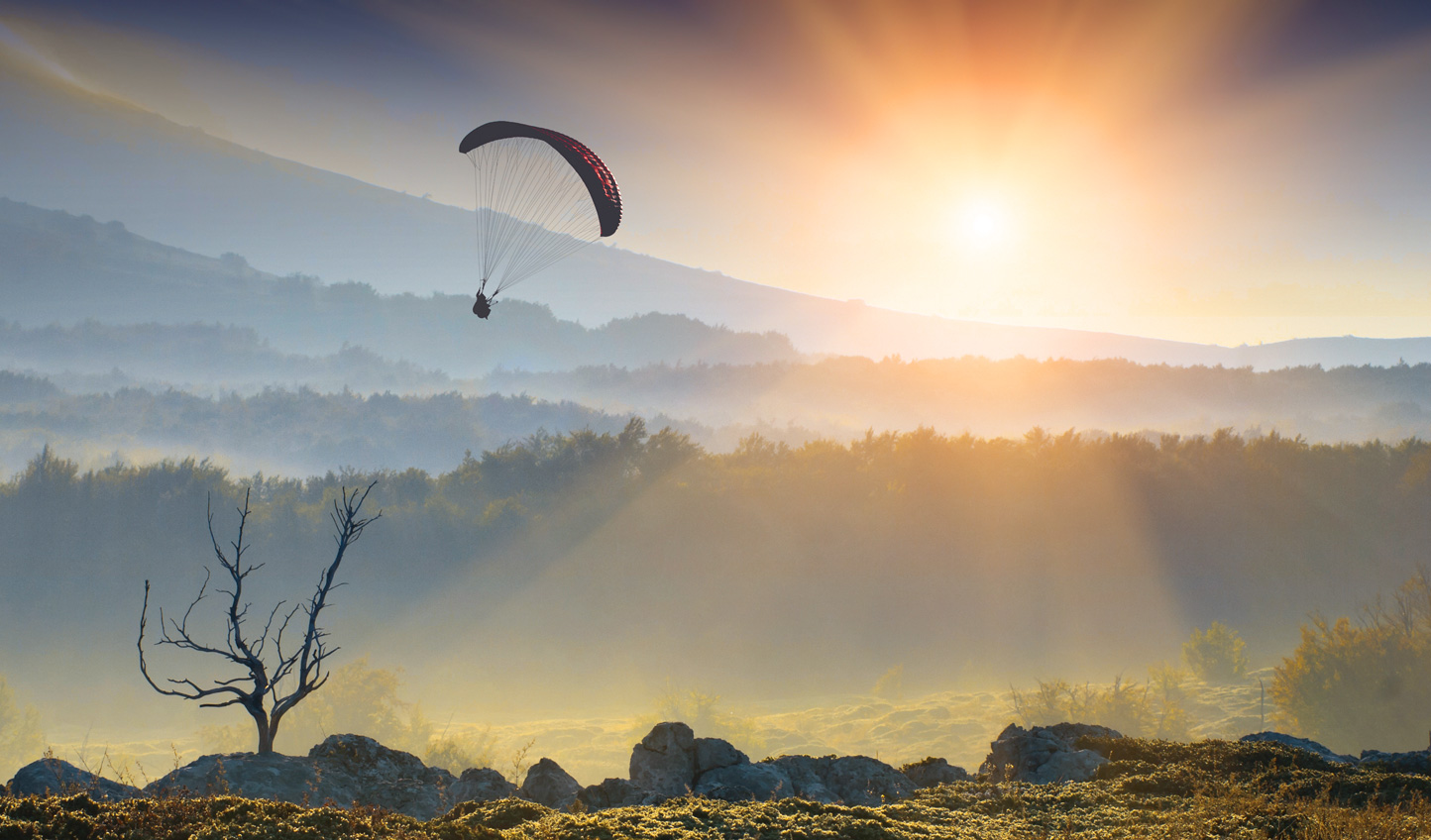 Enjoy the peace and tranquility of paragliding above it all